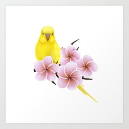 Yellow Budgerigar Art Print