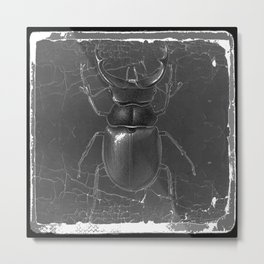 BLACK & WHITE  ANTIQUE STAG-HORNED BEETLE   PATTERNS  ART Metal Print