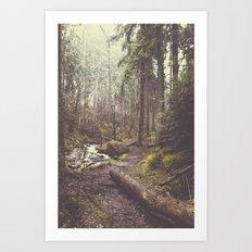 The paths we wander Art Print