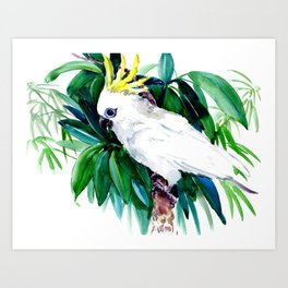 Parrot White Cockatoo and Tropical Foliage Art Print