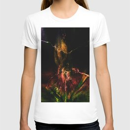 Concept abstract : Anno flore amet T-shirt