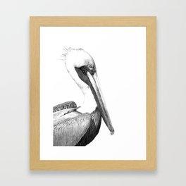 Black and White Pelican Framed Art Print