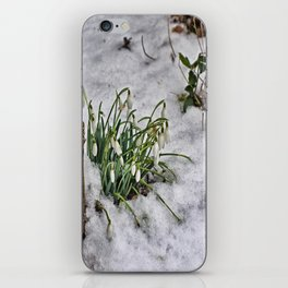 Snowdrops iPhone Skin