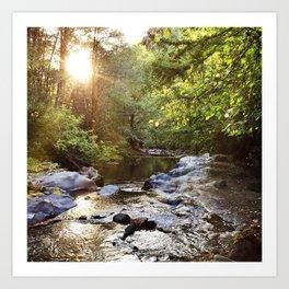 River in Washington state Art Print