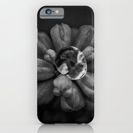 Dewdrop on Hyacinth blossom floral black and white photograph / photography iPhone Case
