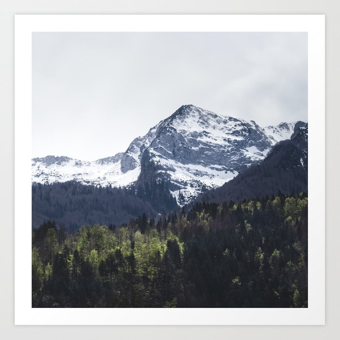 Winter and Spring - green trees and snowy mountains Art Print