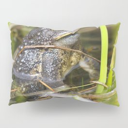 Toad in the pond Pillow Sham
