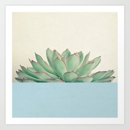 Succulent Dip III Art Print