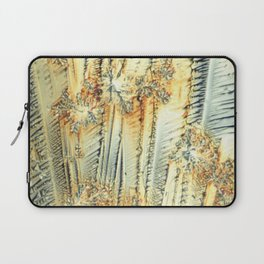 Vitamin C Sources for Happiness Laptop Sleeve