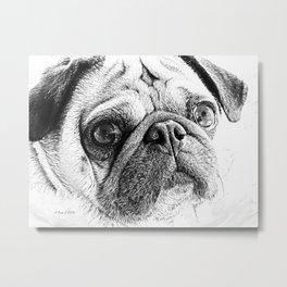 Cute Pug Art By Annie Zeno Metal Print