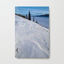 Wonder Lake, Denali National Park Metal Print