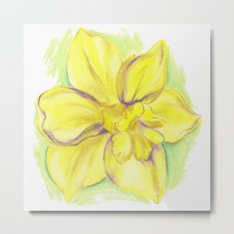Yellow Daffodil Blossom Metal Print
