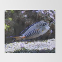 Sea World Colorful Fish Throw Blanket