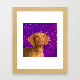 Vizsla  - Hungarian pointer puppy on purple Framed Art Print