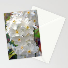 Flowers of White Stationery Cards