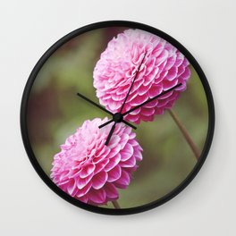 Chrysanthemums in Afternoon Light Wall Clock