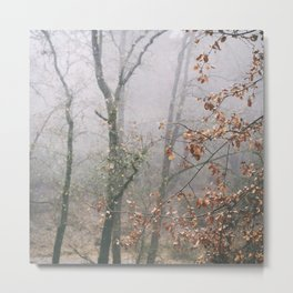 """Into the woods VII"". Wandering into the fog Metal Print"