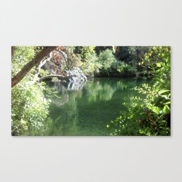 Moment of Clarity Canvas Print