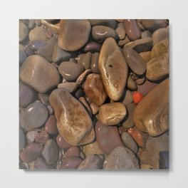 The Red Pebble Metal Print