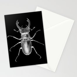 Love Warrior Stationery Cards