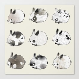 Little Bunnies Canvas Print