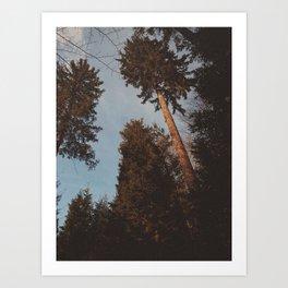 Nostalgic Trees Art Print