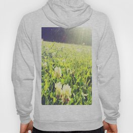 Field of Dreams Hoody