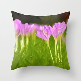 Crocus! - It Must Be Spring Throw Pillow
