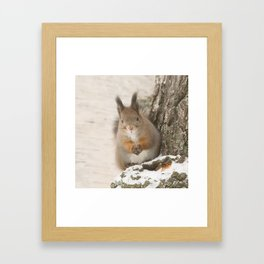 Hi there - what's up? Framed Art Print
