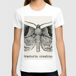 Linden Looper (Hybernia tiliaria) from Moths and butterflies of the United States (1900) by Sherman T-shirt