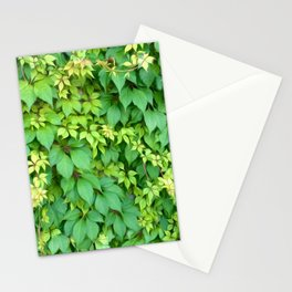 Logan IVY Stationery Cards