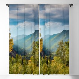 Sunlight Valley // Dense Forest View through the Autumn Colors in Colorado Blackout Curtain