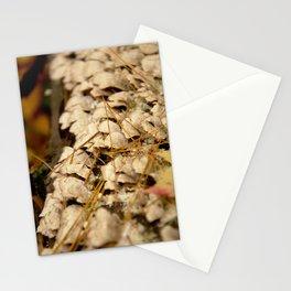 2015-10-23 - 0009 Stationery Cards