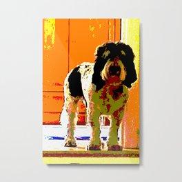 Pup on Stairs Metal Print