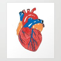 anatomical heart Art Prints featuring Anatomical Heart by KA Doodle