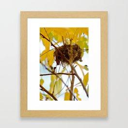 View From Below Framed Art Print
