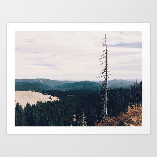 STAND STILL - landscape photography Art Print