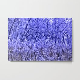 Rough and misty Metal Print
