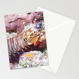 Mantis shrimp (the weirdest animal on the planet) Stationery Cards