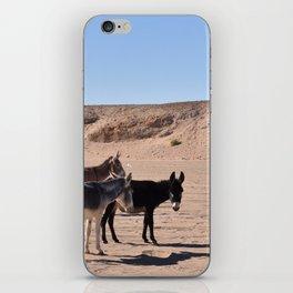 Sahara Donkeys iPhone Skin