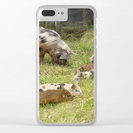 Kunekune Pigs Christmas Greeting Clear iPhone Case