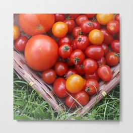 A TRAY OF GOODNESS Metal Print