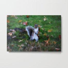 Brave Squirrel Metal Print