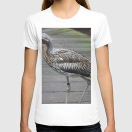Bush stone-curlew T-shirt
