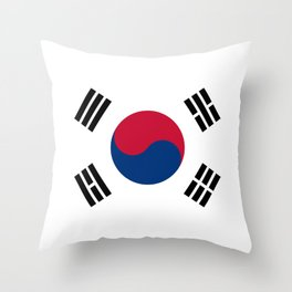 National flag of South Korea, officially the Republic of Korea, Authentic version - color and scale Throw Pillow