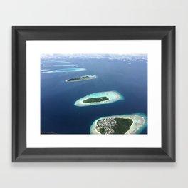 Bird View Framed Art Print