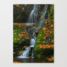 Round Pound Falls Canvas Print