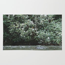 Streams of Living Water 2 Rug