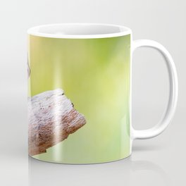 Cute chipmunk on a branch in the forest Coffee Mug