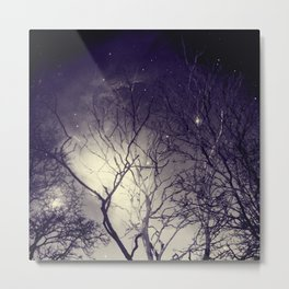 Mist in the Forest. Metal Print